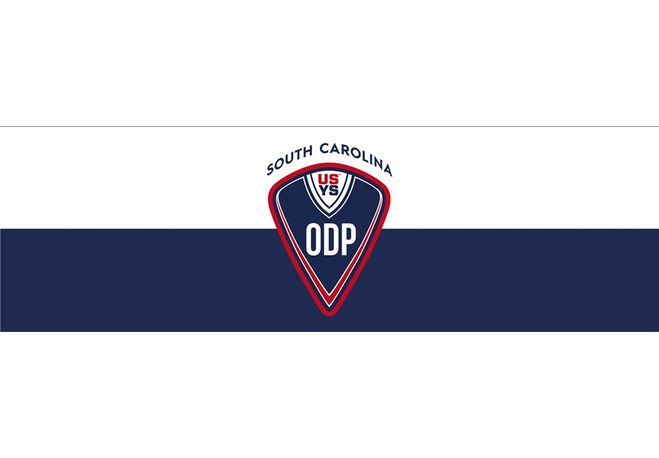 ODP_logo_for_website